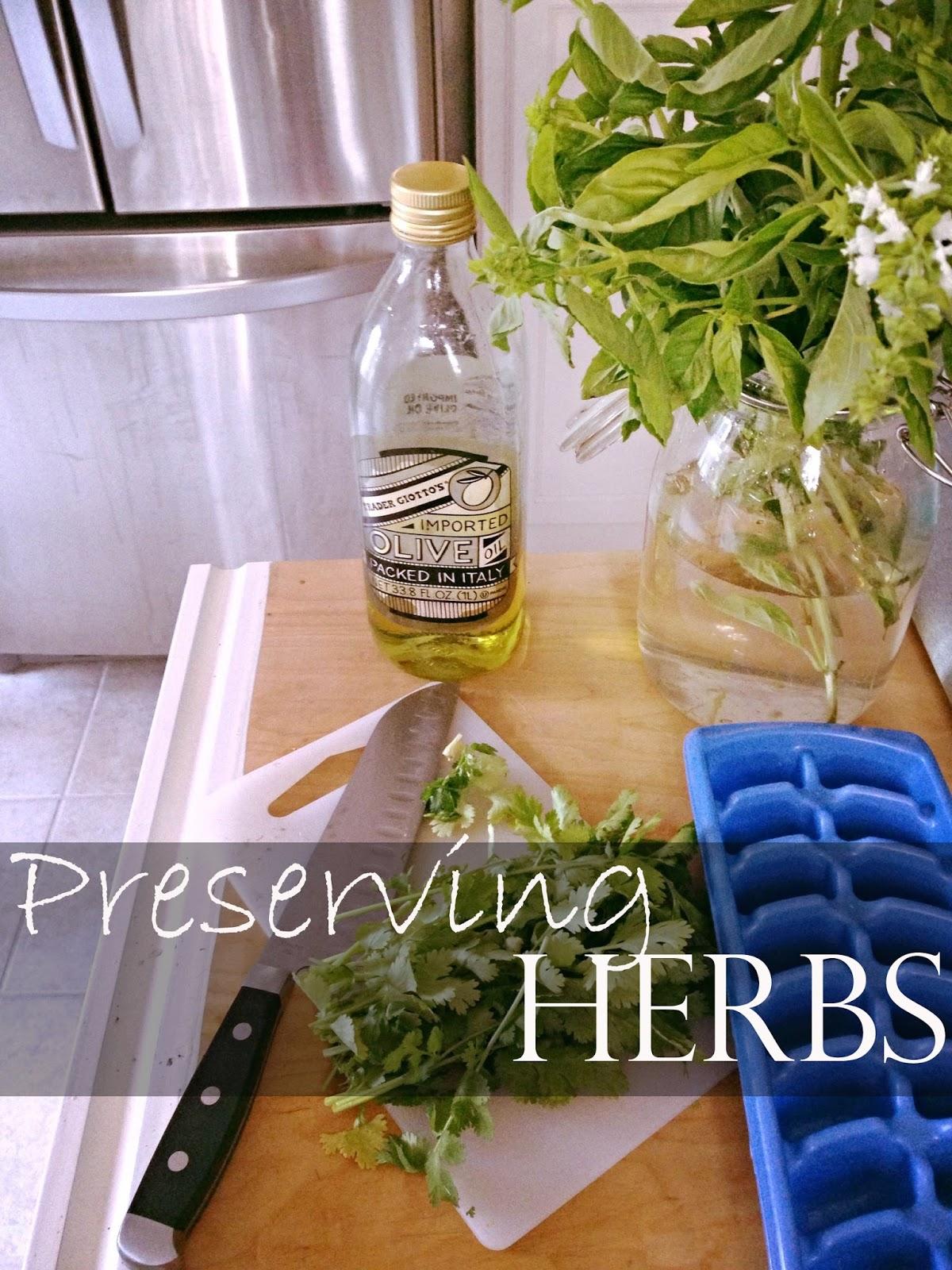 Preserving Herbs!